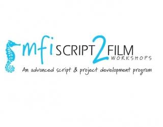 logo mfi script to film workshops